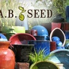 Up to 60% Off Pots & More at A.B. Seed
