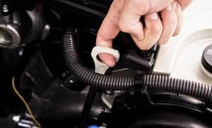 Auto Supreme: One or Two Castor Oil-Change Packages With Tire Rotations at Auto Supreme (Up to 72% Off)