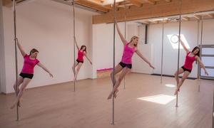 Pole Dance Krefeld: 60 Min. Pole-Dance-Schnupperkurs für ein oder zwei Personen bei Pole Dance Krefeld (bis zu 54% sparen*)