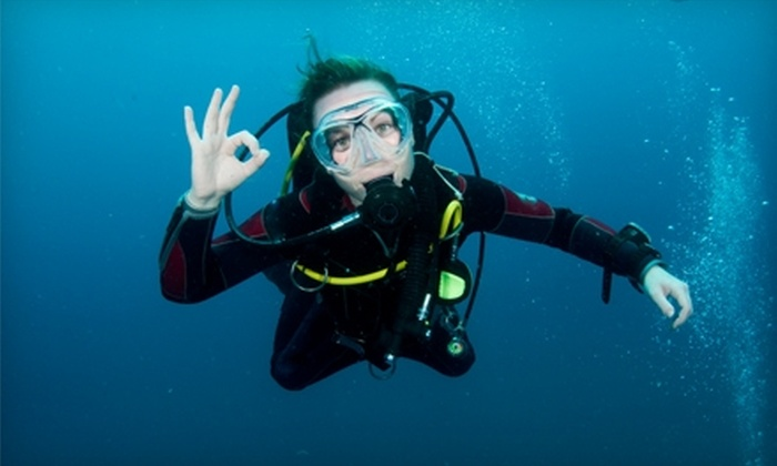 Dive Zone Scuba - Pearland: $29 for a Three-Hour Discover Scuba Course from Dive Zone Scuba in Pearland ($95 Value)