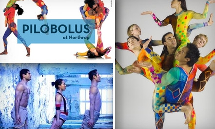 Northrop - University: Half Off a Ticket to See the Pilobolus Dance Theatre on February 13 at 2 p.m. Buy Here for a $27 Ticket ($55 Value). See Below for Additional Seating and Prices.
