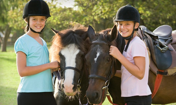 Crossroads Ranch - 5: One or Two One-Hour Horseback-Riding Lessons at Crossroads Ranch (Up to 51% Off)
