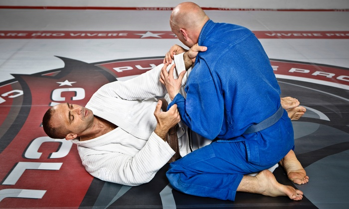 New York Elite MMA - Howard Beach: Muay Thai Kickboxing or Brazilian Jiujitsu Classes at New York Elite MMA (Up to 70% Off)