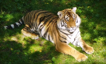 2 Admissions (up to a $40 value) - Bowmanville Zoo in Bowmanville