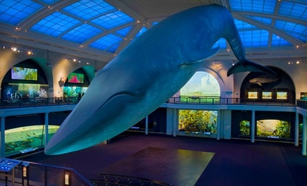 American Museum of Natural History: 1-Year Dual Membership, Good for 2 Adults, Plus 2 Adult Tickets to