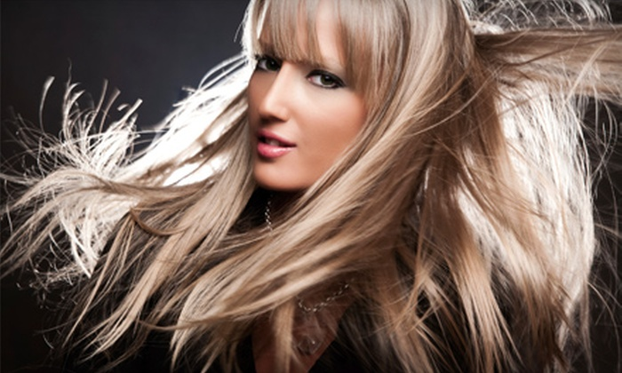 Studio North Salon - Williamsville: $25 for a Shampooing, Haircut, Style, Deep-Conditioning Treatment, and Eyebrow Wax from Randi at Studio North Salon in Williamsville (Up to $54 Value)