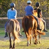 55% Off Horseback Ride for Two on Johns Island