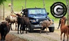 Circle G Ranch - Strawberry Plains: Drive-Thru Safari and Petting-Zoo Outing for Two or Four at Circle G Ranch in Strawberry Plains (Up to 56% Off)