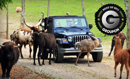 Drive-Thru Safari and Petting-Zoo Outing for 2 - Circle G Ranch in Strawberry Plains