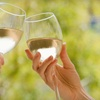 Half Off Tickets to Two-Day Wine Fest in Vermillion