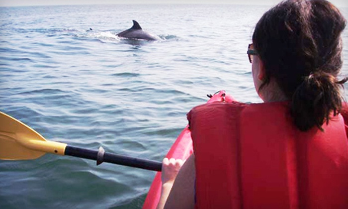 Ocean Eagle Kayak Adventures - Northeast Virginia Beach: Dolphin and Nature Kayaking Encounter for One, Two, or Four from Ocean Eagle Kayak Adventures (Up to 53% Off)