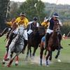 Saratoga Polo Association—Half Off Polo Match
