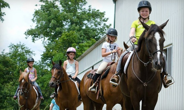 Johnson Horse Riding School - Pacific: Two Private, Semiprivate, or Group Riding Lessons at Johnson Horse Riding School (Up to 54% Off)