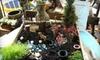 Backyards - Mishawaka: $15 for $30 Worth of Gifts and Outdoor Décor at Backyards