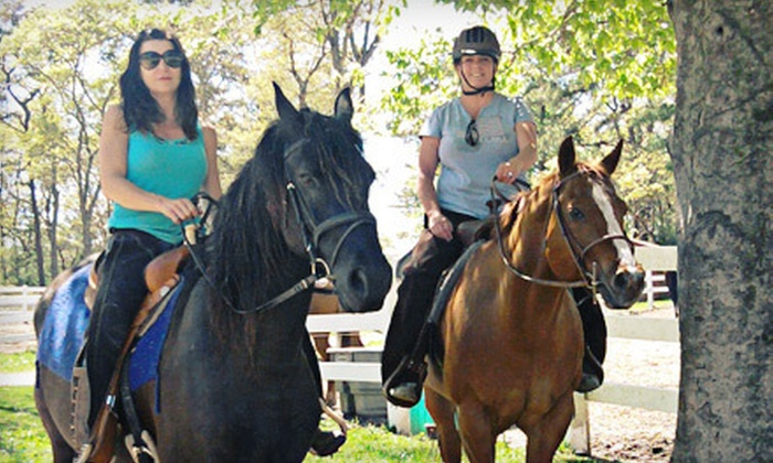South Shore Equestrian Center - Plymouth: 60-Minute Horseback-Riding Lesson for One or Two at South Shore Equestrian Center in Plymouth (Up to 57% Off)