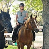 Up to 57% Off Horseback-Riding Lesson in Plymouth