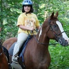Half Off Horse-Riding Lessons in Independence
