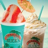 Bahama Buck's – Up to 50% Off Shaved Ice