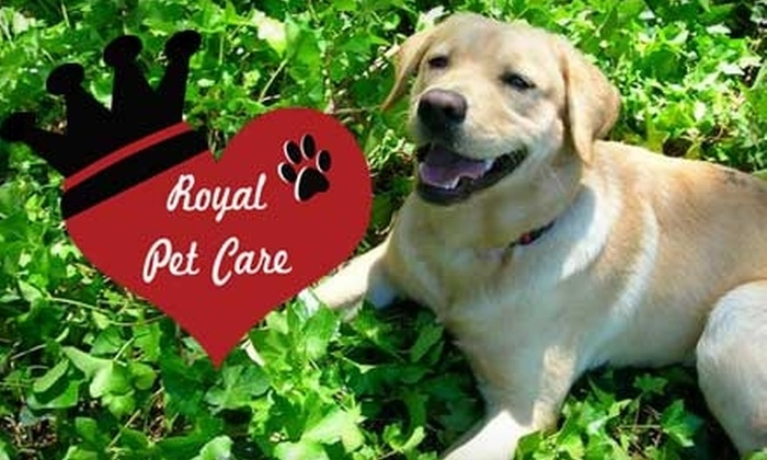 Royal Pet Care - Eagle: $12 for $32 Worth of Dog Walking or Pet-Sitting Services from Royal Pet Care