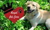 Royal Pet Care, LLC - Eagle: $12 for $32 Worth of Dog Walking or Pet-Sitting Services from Royal Pet Care
