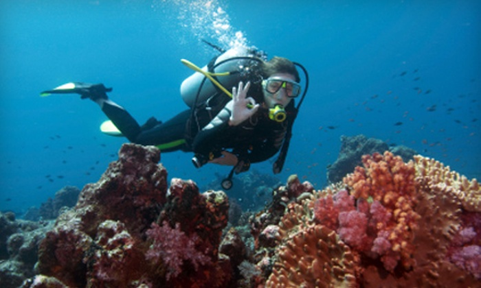Pro Ski and Scuba - Grandview Heights: Discover Scuba Diving Experience for One, Two, or Four at Pro Ski and Scuba