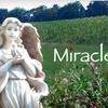 58% Off at Miracle Valley Vineyard