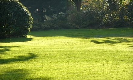 One Fertilizer and Weed Control Application for 5,000 Square Feet of Lawn  - Barrier Lawn & Pest, Inc. in