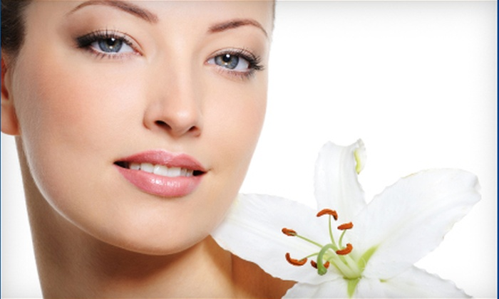 The Brow Lady USA - Phoenix: $42 for a Signature Facial at The Brow Lady USA in Scottsdale ($100 Value)