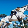 Up to 53% Off Riding Lessons at Alpine Ridge Farms