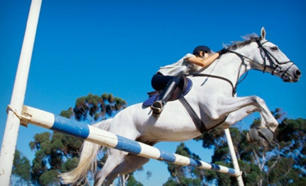 One 60-Minute Private Horseback-Riding Lesson (a $50 value) - Alpine Ridge Farms in Sparta
