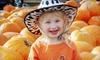 Bengtson's Pumpkin Fest - Homer Glen: $12 for a Pumpkin Fest Outing for Two at Bengtson's Pumpkin Fest in Homer Glen (Up to $23.98 Value)