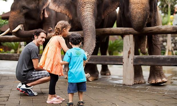 Bali: Admission to Bali Zoo 4