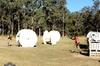 Love Paintball?