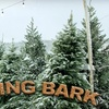 Up to 69% Off Christmas Tree and Coffee