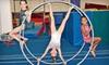 Nova Gymnastics - Nova Gymnastics: $15 for One Day of Summer Adventure Camp at Nova Gymnastics in Davie ($50 Value)