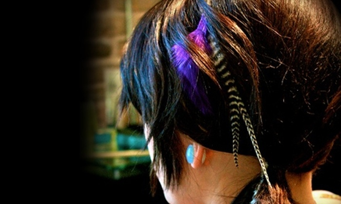 Suede Salon - Austin: $79 for Feather Hair Extensions, Haircut, and Deep-Conditioning Mask, Plus a $25 Gift Card, at Suede Salon ($178 Value)
