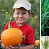 Green Hand Farm Park - Petsworth: $20 for Four Admission Tickets Plus a Small Pumpkin at Green Hand Farm Park (Up to $41 Value)