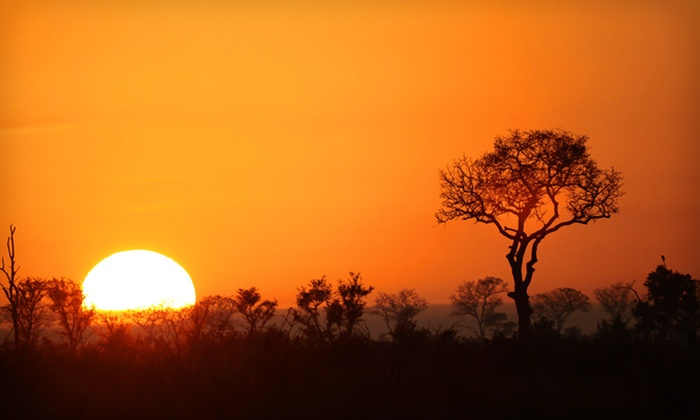 Royal Kruger Lodge - New York City: $1,772 for a Five-Night Stay and Safari Package in South Africa (Up to $3,109 Value)