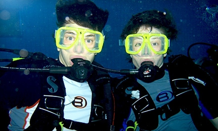 Langley Diving - Multiple Locations: $29 for a Deluxe Discover Scuba-Diving Experience at Langley Diving ($60 Value)