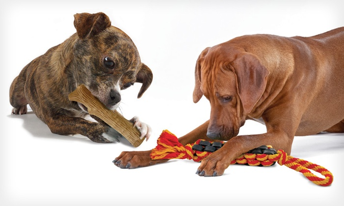 Petstages Durable Dog Toys: Durable Dog Toy in Small, Medium, or Large (Up to 54% Off). Free Shipping on Purchases of $15 or More. Free Returns.