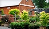 Broken Arrow Nursery, LLC - Hamden: $15 for $30 Worth of Plants and Services at Broken Arrow Nursery in Hamden