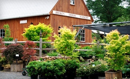 $30 Groupon to Broken Arrow Nursery - Broken Arrow Nursery in Hamden