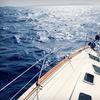The Sailing Academy - The Sailing Academy: $50 Toward Intermediate Sailing Classes