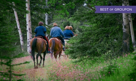 Horseback Trail Riding for Two or Four from Equutrails (Up to 44% Off)