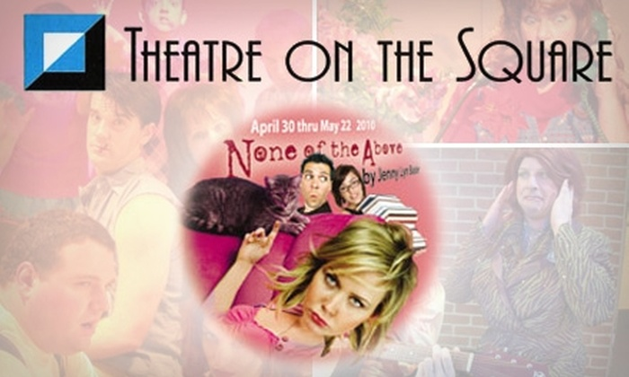 """Theatre on the Square - Chatham-arch: $12 Ticket to """"None of the Above"""" from Theatre on the Square"""