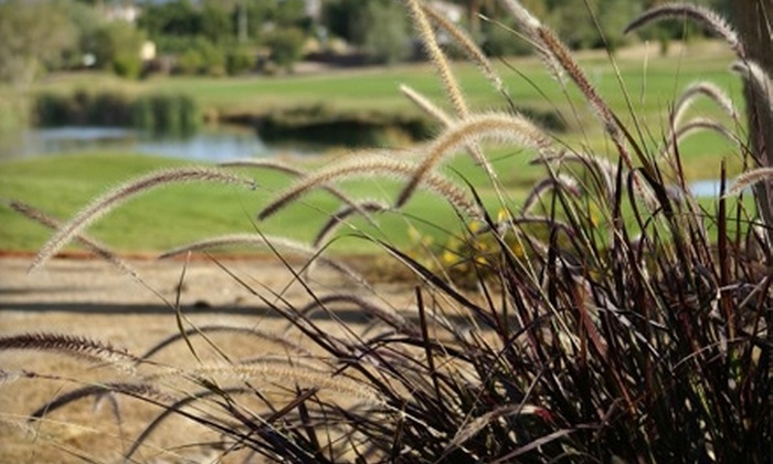 Wildhorse Golf Club - Green Valley North: $25 for 18 Holes of Golf with Cart at WildHorse Golf Club in Henderson (Up to $108 Value)