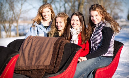 30-Minute Sleigh Ride for 1, Including a Hot Beverage and a Snack (a $32 value) - Countryside Christmas in Harvard