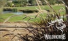 Wild Horse Golf Club - Green Valley North: $30 for 18 Holes of Golf with Cart at Wild Horse Golf Club (Up to $108 Value)