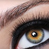 Up to 61% Off Waxing or Eyelash Extensions