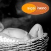 60% Off from Sigal Ineno Photography
